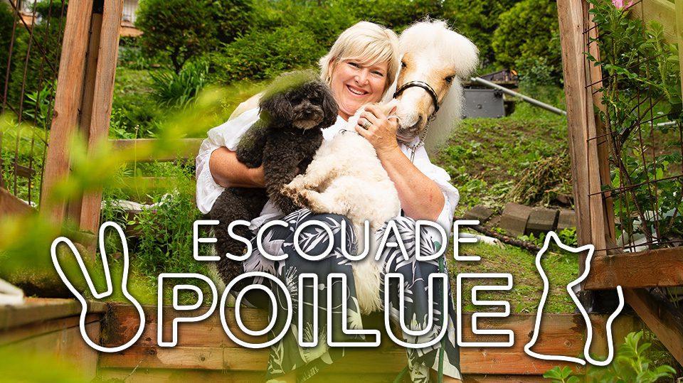 Photo logo Escouade poilue