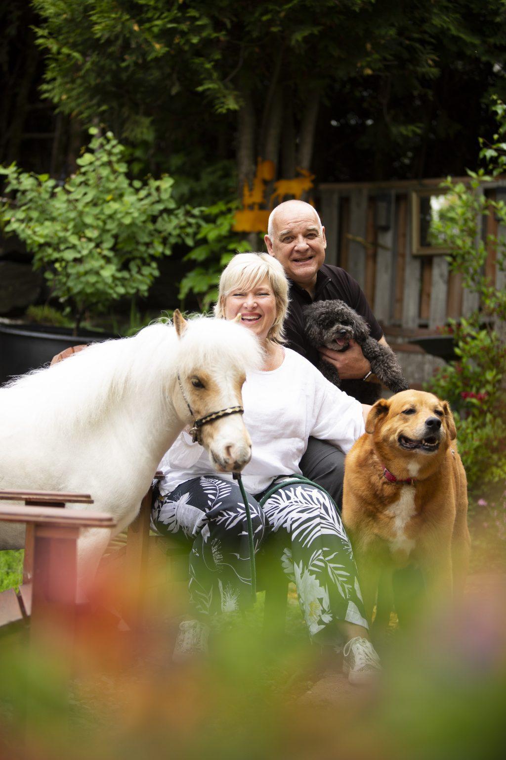 Photo portrait Escouade poilue chien cheval